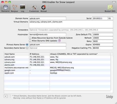DNS Enabler for Snow Leopard